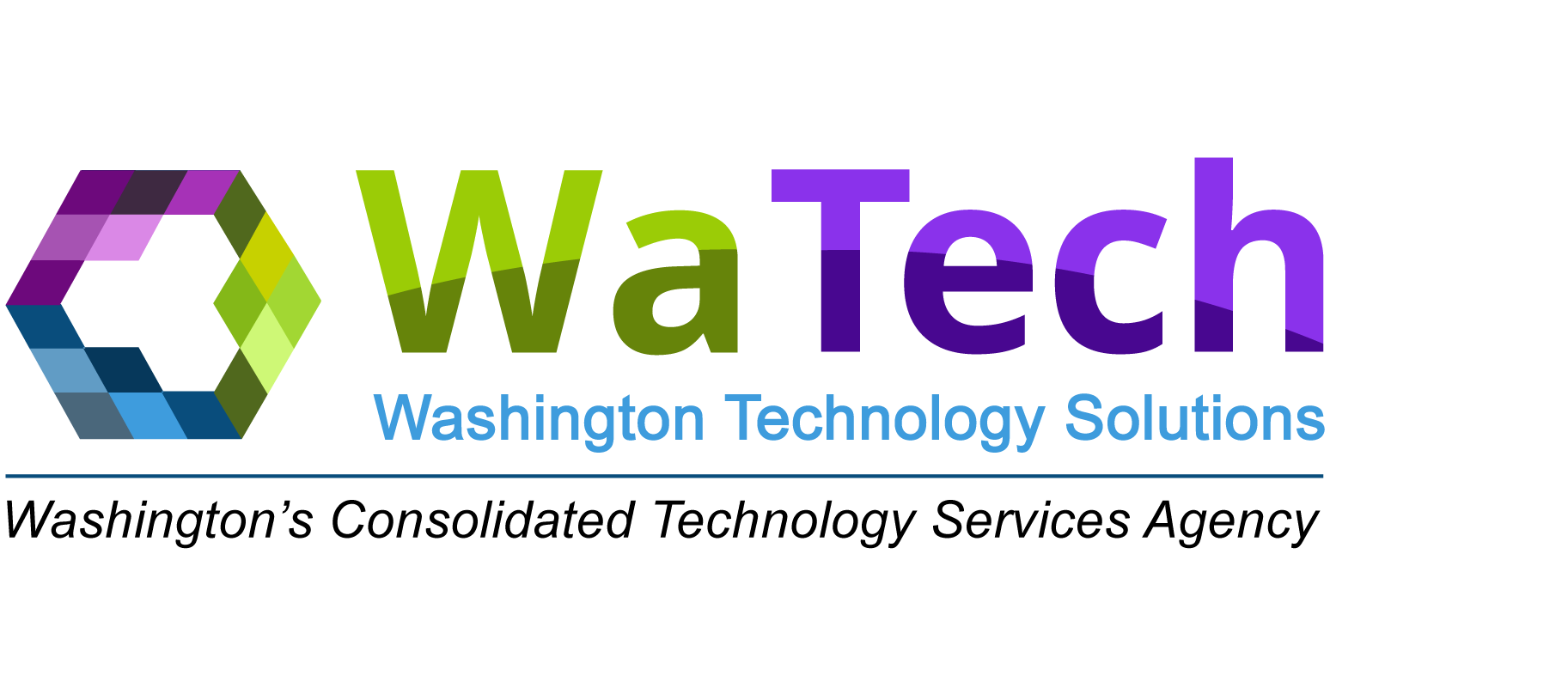 Washington Technology Solutions
